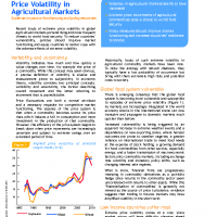 FAO Policy Brief – Food Price Volatility